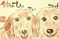 0708ninomiya-aren.furu-to-burogu.jpg