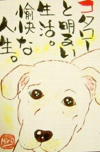 0708t-kotarou.jpg