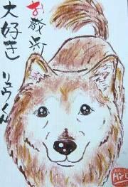 071222yasima-ryu-borogu.jpg