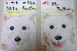 080111tanaka-rakku-chappyi-.jpg