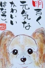 080123miyazaki-hanakochan.jpg