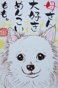 080125satou-momo-ttiwawa-burogu.jpg