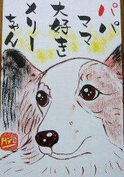080322kadowaki-mari-chan.jpg