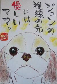 090210hirose-jyun.jpg