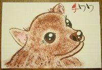 0907net-tiwawa.jpg