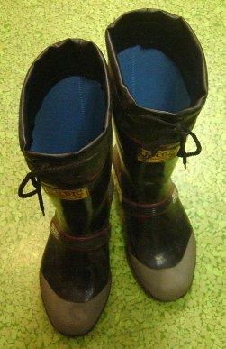 DSC00020長靴.jpg