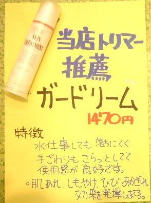 DSC09995ガードリーム.jpg