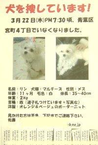 satou-maigo-maru-rin.jpg