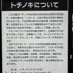 090710totinoki-iware