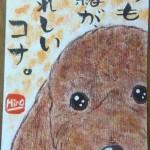 100122hiramaru-kona-pu