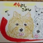 110516abe-ben-shu-mimi