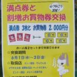 110529wakuwaku