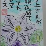110622segawa-aroma-tessenn