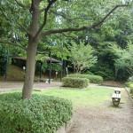 110730dainohara6choume-kouen