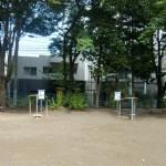 110730kamisugi-kouen-asuretikku