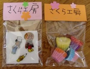 111205sakura-kyandoru