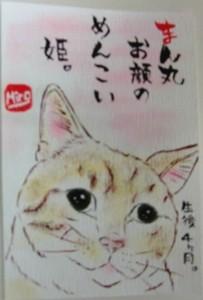 121124kasizakihime-etegami